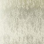 2707240 Birches Ivory, Silver by FSchumacher